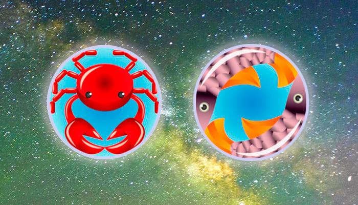 Рак-Рыбы совместимость