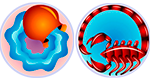 Водолей-Скорпион совместимость